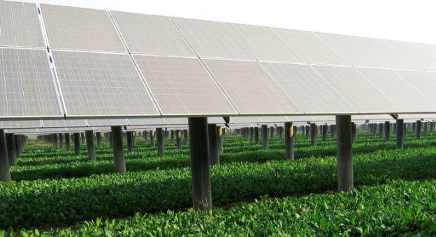 科普 | 建一个光伏农业大棚国家有哪些补贴?