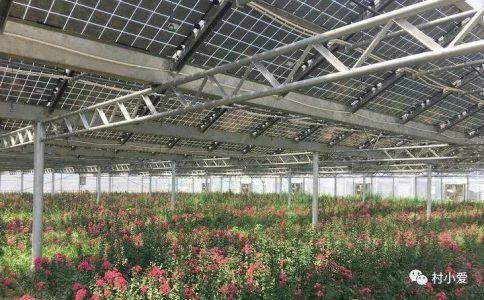 """他在屋顶上建了个""""光伏花圃"""",上面发电,下面种花,惬意~"""