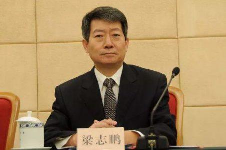梁志鹏:我国光伏发电量达1182亿千瓦时,成同比增长最快的可再生能源