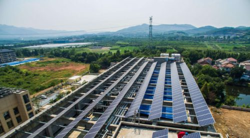 新政后全球太阳能面板价格大跌 今年跌幅或超35%!