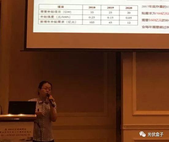 王淑娟:去补贴背景下更要做高质量光伏电站