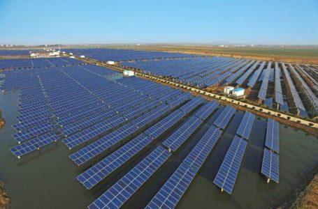 """正信光电拟投建印度2GW光伏产业园 """"出海""""步伐加快"""